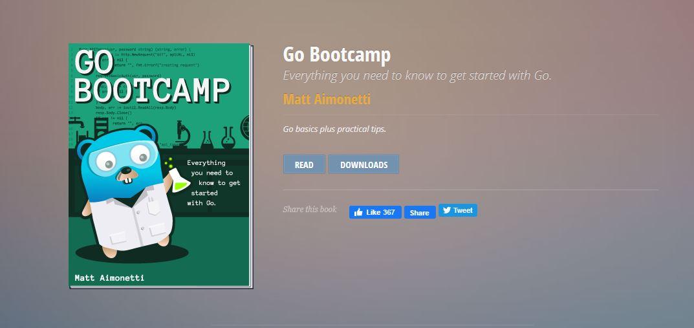 Go bootcamp-learn go