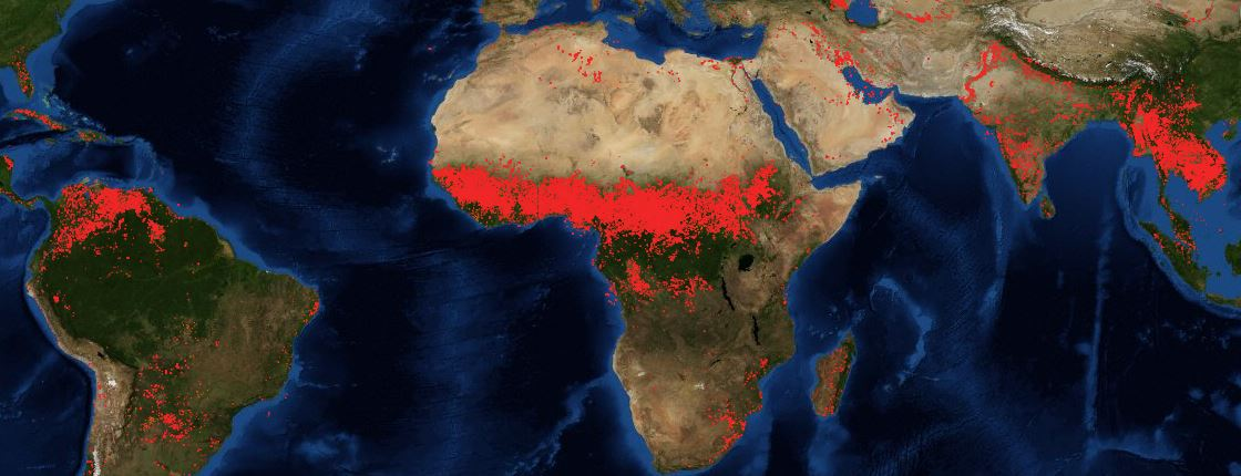 Forest fire in maps