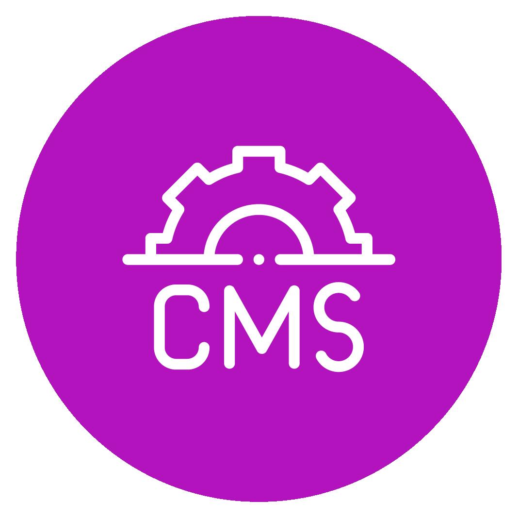 CMS-2-1
